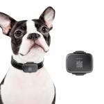 Original Xiaomi Youpin PETBIT G1 Pet Smart Locator Anti-lost Collar(Black)